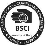 audit-bsci-sm-150x150
